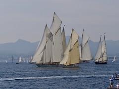 Cannes -Regates royales 2017 (plb06) Tags: france cannes regatesroyales sailboats