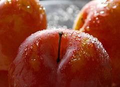 °°° (MargoLuc) Tags: macromondays theme stayinghealthy fruits healthy plums susine droplets juicy yellow orange summertime delicious natural light bokeh backlight