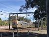 Westbound empty cars (highplains68) Tags: aus australia nsw newsouthwales strathfield sydneytrains vset intercity interurban