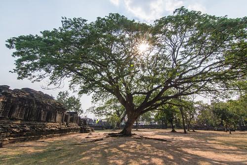 phimai - thailande 28