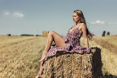 Monica - 4/6 (Pogdorica) Tags: modelo sesion retrato campo monica paja bala trigal chica rubia sexy