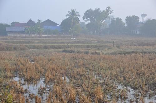 khong chiam - thailande 81