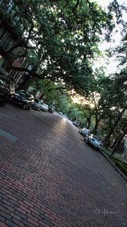 Summer Evening Savannah GA by sheldn