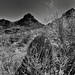 A View Back to Gate Pass (Black & White)