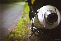 F800R loud end (G. Postlethwaite esq.) Tags: bmwf800r dof fujx100t staffordshiremoorlands beyondbokeh bokeh depthoffield exhaustpipe motorbike motorcycle photoborder selectivefocus