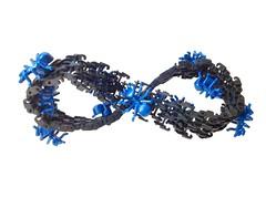 Möbius Strip (jigsawjo) Tags: lego ant mobius mobiusstrip escher