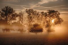 IMG_0582_0583 (JJ_1968) Tags: limburg summer sunshine autumn foggy