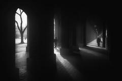 Three (RobertFenyo) Tags: street blackandwhite blackwhite shadow light urban
