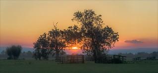 Evening mist in september