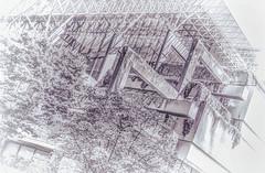 Courthouse B&W (beelzebub2011) Tags: canada britishcolumbia vancouver bw monochrome lawcourts