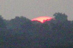 sunrise over East Dallas Texas 2nd day of Fall 2017 (23) (Learn, Love, Conserve) Tags: sunrise texas dallas sun