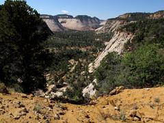 Zion NP_026 (Thomas Jundt + CV) Tags: checkerboardmesa eastrimtrail nationalpark usa utah zionnp
