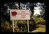 Artficial Insemination Centre In Kenya = ケニアの家畜人工授精センター (JIRCAS) Tags: アフリカの広域家畜疫病の抵抗性育種に関する研究 ケニア ナイロビ 畜産 遺伝資源 cattle artficialinseminationsemen nairobi kenya