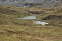 les petites gouilles de Lona (bulbocode909) Tags: valais suisse grimentz lona gouilles valdanniviers montagnes nature vert lacs cabanedesbecsdebosson