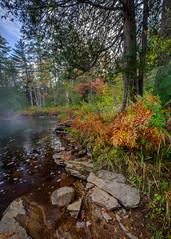 Fall on the Ox Tongue (John J Buckley) Tags: oxtongueriver autumn nationalparl landscape muskoka ontario canada fall algonguin