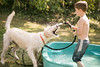 frodo-service-dog-in-training-17 (Little Earthling Photography) Tags: dog labradoodle water servicedog boy summer