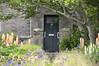 DSC_6957No12 (artsynancy) Tags: shetlandislandsuklerwick shetlandislands uk lerwick no12 door delphiniums flowers flower garden frontyard yard