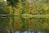 EARLY FALL LILY POND (Bill Vrtar Photo) Tags: millcreekpark boardman ohio youngstown vrtarsmugmugcom fall lilypond reflection