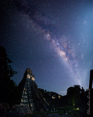 El Gran Jaguar y Milky Way (Claudia Lira's) Tags: milky way canon 6d tikal guatemala centroamerica astro night photography nightshots mayas outdoors vacations vl stars