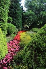 036A3563 (zet11) Tags: ogrody tematyczne hortulus dobrzyca garden plant