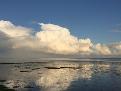 Wadden Sea at high tide