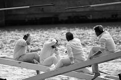 Joutes Nautiques II (glarigno) Tags: joutes nautique fleuve river rivière garonne toulouse france europe europa fight aquatic people personnes street boats boat bateau bateaux water