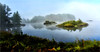 LET ME KEEP COMPANY (Aspenbreeze) Tags: sweenywildanimalreserve michigan fog water foggy lake leaves trees reflection mighiganlandscape landscape island morning bevzuerlein aspenbreeze moonandbackphotography
