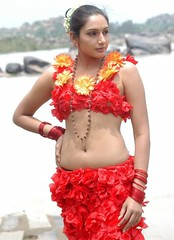 Indian Actress Ragini Dwivedi Images Set-1 (91)