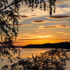 sunset (Stefano Rugolo) Tags: stefanorugolo pentax k5 smcpentaxda1855mmf3556alwr squarefomat silhouettes lake sunset sky trees hälsingland sweden sverige
