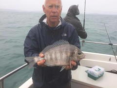 "Mike Hansell 3lb 4ozs Black Bream • <a style=""font-size:0.8em;"" href=""http://www.flickr.com/photos/113772263@N05/23581300628/"" target=""_blank"">View on Flickr</a>"