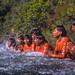 Crise Hídrica afeta Cerrado