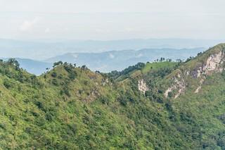 doi pha tang - thailande 24