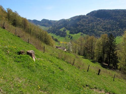 Schönenberg_079