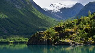 Norwegian shimmer