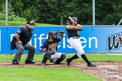 Baseball - Raiffeisen Wölfe Lauf - Fürth Pirates