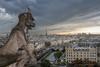 Vistas de París desde Catedral de Notre- Dam. (sefa68) Tags: parís catedraldenotredam gargola torreeiffel