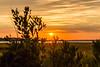20160905 Bethany sunset-3.jpg (ashleyrm) Tags: bethanybeach towershores delawarebeach ocean indianriverinlet sunset vacation tourism travel landscape nature canon canonrebel canonrebelt4i
