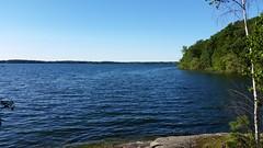 Wellesley Island State Park (stingrayintl) Tags: newyork river stlawrenceriver statepark newyorkstateparks wellesleyisland wellesleyislandstatepark jeffersoncounty thousand islands water thousandisladns