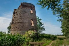 Le vieux moulin. (musette thierry) Tags: moulin musette thierry d600 reflex nikon ancien vert architecture ruine
