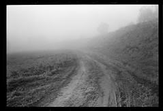 First fog this fall (Other dreams) Tags: pomerania vistulavalley levee field road mud meadow fog mist dense exisitinglight autumn fall bw film analogue fomapan200 135 blackframe negative empty nofilter silence peace serenity tranquility