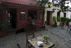 Que lo parió Mendieta (galoware) Tags: uruguay coloniadesacramento colonia colonial arquitecturacolonial riodelaplata sel1018 empedrado adoquin calle street calleempedrada dog dogs perro perros bar quelopariomendieta