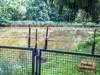 Herrenbach Stausee (onkelhowdy) Tags: stausee herrenbach göppingen adelberg