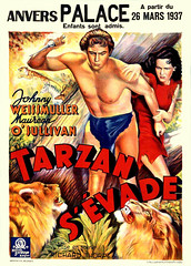 Tarzan Escapes (1936, USA) - 18 (kocojim) Tags: maureenosullivan illustrated kocojim poster johnnyweissmuller publishing advertising film illustration motionpicture movieposter movie