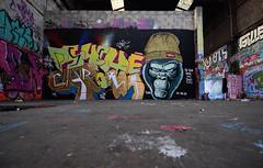 Psyché chroma (HBA_JIJO) Tags: graffiti letters lettrage lettring lettres friche abandoned gorille gorilla singe monkey aerosol art paris92 france hbajijo wall mur murale writer junky hek peinture painting spray bombing streetart