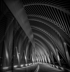 The Path (tshabazzphotography) Tags: architecture buildings art angles lines leadinglines innovation unique university polytechnical florida nightphotography blackandwhite bw centralfloridaphotographer explore longexposure longexposurephotography vanishingpoint geometric geometry dark pathway nightlight reflection