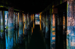 What lies beneath (Photography by Julia Martin) Tags: photographybyjuliamartin vancouver britishcolumbia downtown pylons barnacles reflections sunsetlight whatliesbeneath darkshadows eleven dappledlight patterns tripod balancedonthesteps
