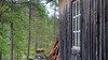 img_5889_36431342326_o (CanoeMassifCentral) Tags: canoeing femunden norway rogen sweden