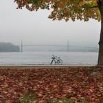 Fall's Here thumbnail