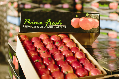 Pink Lady apples 21