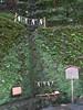 God water (toshto) Tags: 貴船神社 京都 山 水 森 神社 寺院 自然 宇宙 川 御神木 kifune kyoto japan mountain water wood shrine temple nature river universe sacredtree